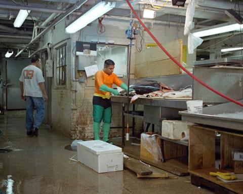 UVENTINO ROSAS originario del Estado de México trabaja limpiando pescado en Nueva York. Manda 400 dólares a la semana.